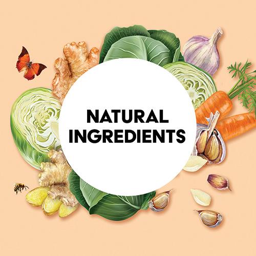 turmeric-sauerkraut-ingredients-illustration